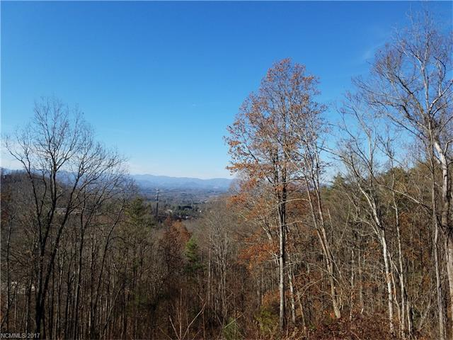 TBD Baird Cove Lane #25, Asheville, NC 28804 (#3343566) :: The Temple Team