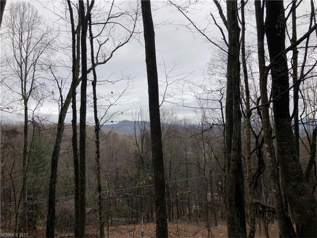 TBD Apple Creek Road, Waynesville, NC 28786 (#3343782) :: Puffer Properties
