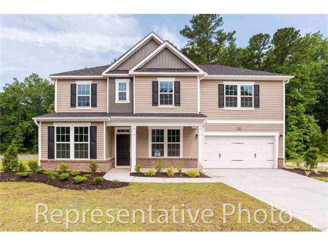 10307 Pahokee Drive, Mint Hill, NC 28227 (#3344184) :: Odell Realty Group