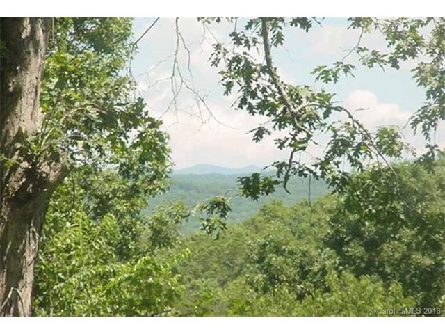 Lot #23 Mountain Knoll Lane #23, Warne, NC 28909 (#3344244) :: High Performance Real Estate Advisors