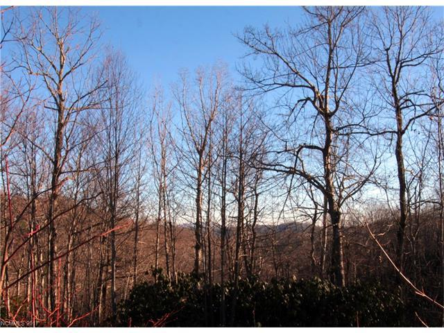 Lot 29 Eastatoe Gap Road #29, Rosman, NC 28772 (#3345671) :: Rinehart Realty