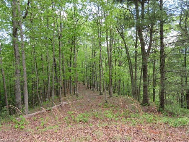 154 Turkey Trot Trail #18, Marshall, NC 28753 (#3346732) :: Rinehart Realty