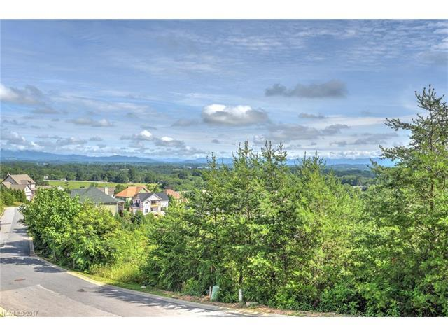 133 Climbing Aster Way #65, Asheville, NC 28806 (#3346740) :: LePage Johnson Realty Group, LLC