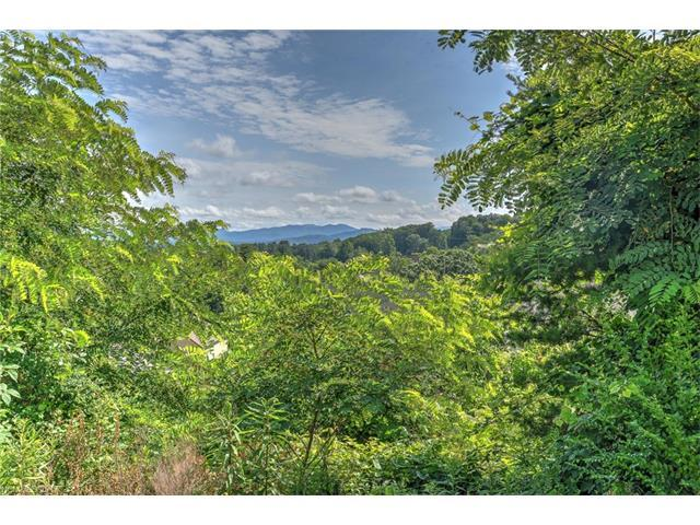 137 Climbing Aster Way #66, Asheville, NC 28806 (#3346755) :: LePage Johnson Realty Group, LLC