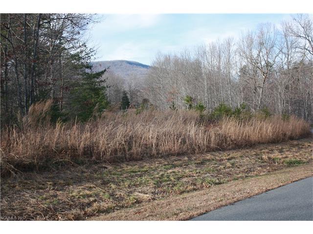 00 Fallen Tree Lane #27, Mill Spring, NC 28756 (#3346805) :: Rinehart Realty