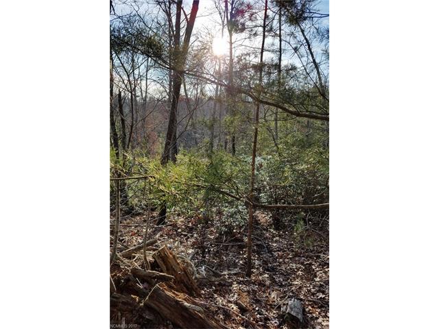 0 Wambli Pass #20, Lake Lure, NC 28746 (#3347062) :: Rinehart Realty