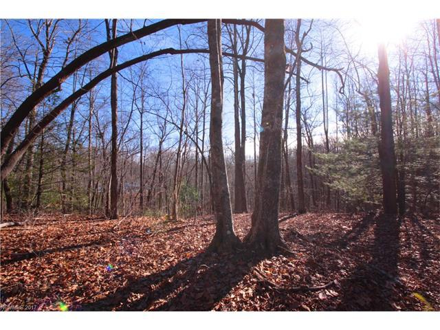 Lot 19A Tranquilite Drive 19 A, Brevard, NC 28712 (MLS #3347331) :: RE/MAX Journey
