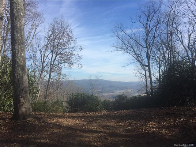 20 Hawkins Hollow Road #20, Pisgah Forest, NC 28768 (#3347878) :: LePage Johnson Realty Group, LLC