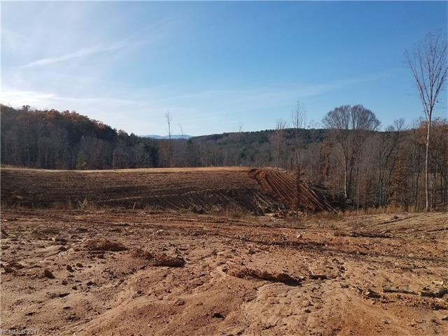 00 County Line Road, Mill Spring, NC 28756 (#3347897) :: Burton Real Estate Group