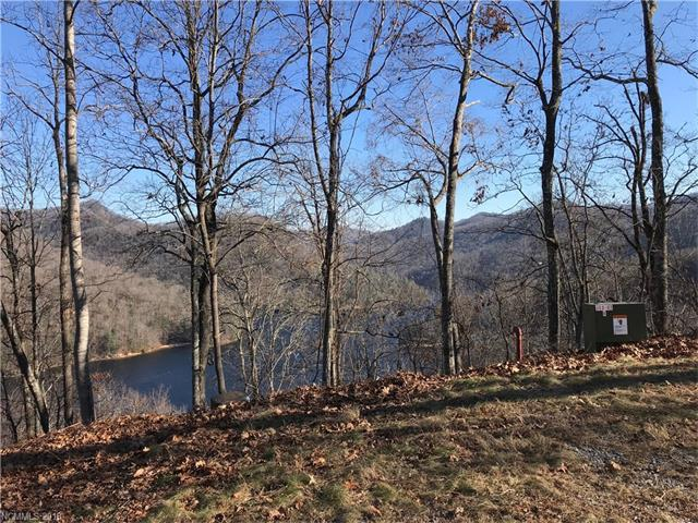 LT 222 Lilywood Court #222, Tuckasegee, NC 28783 (#3349236) :: Miller Realty Group