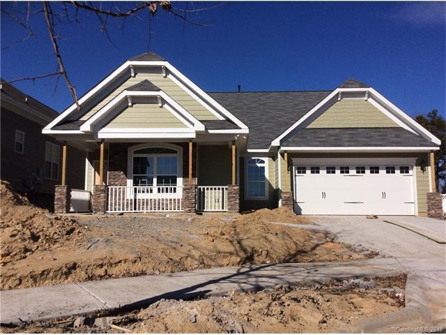 16408 Leavitt Lane, Davidson, NC 28036 (#3349378) :: Puma & Associates Realty Inc.