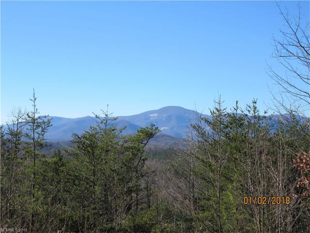Lot 24 Laurel Lakes Parkway, Lake Lure, NC 28746 (#3349542) :: Exit Mountain Realty