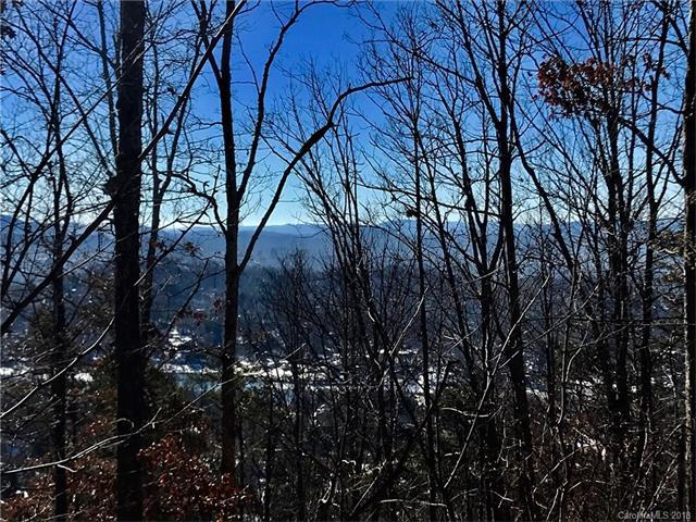 18 Lake Town Lane #252, Asheville, NC 28804 (#3349823) :: Team Southline
