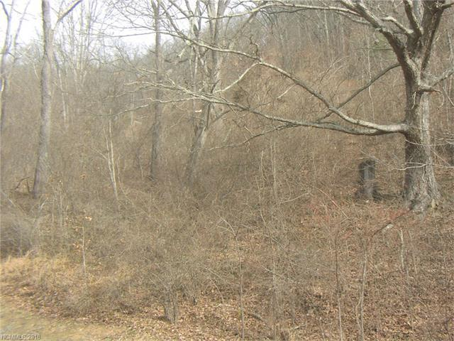 Lot 22 Breckenridge Road #22, Waynesville, NC 28785 (#3349893) :: Puffer Properties