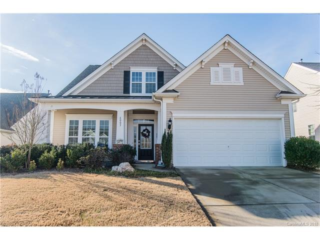 6005 Tyne Court, Indian Land, SC 29707 (#3349897) :: The Andy Bovender Team