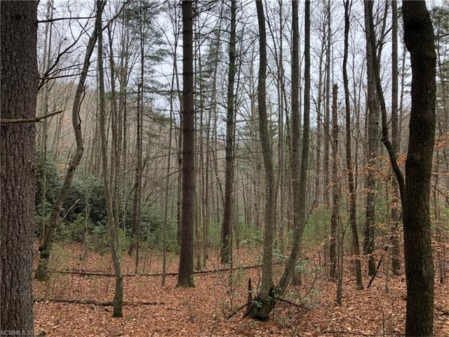 TBD Abbey Lane #26, Hendersonville, NC 28792 (#3350728) :: Exit Mountain Realty