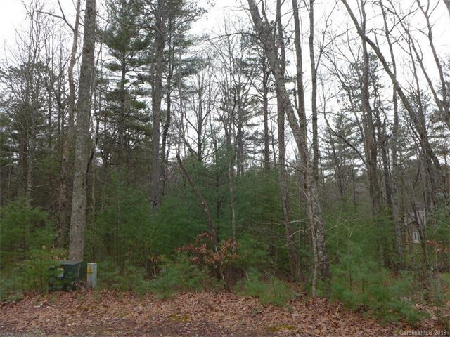 120 Hunters Ridge #120, Brevard, NC 28712 (#3350840) :: Puffer Properties