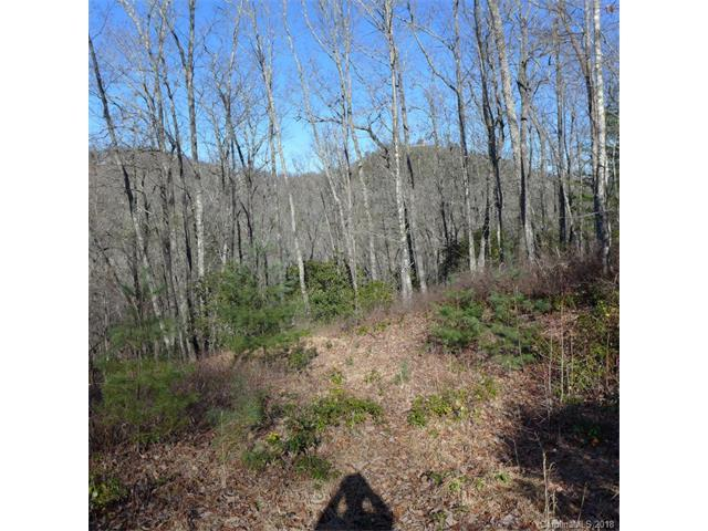 103 Laurel Thicket Lane #103, Brevard, NC 28712 (#3350961) :: Exit Mountain Realty