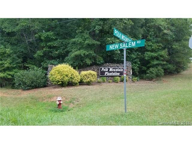 5605 Polk Mountain Drive #1, Marshville, NC 28103 (#3350994) :: Besecker Homes Team