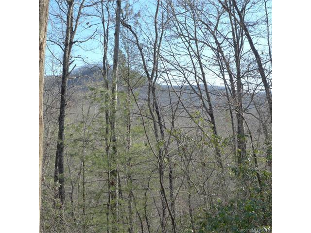 91 Laurel Thicket Lane #91, Brevard, NC 28712 (#3351229) :: Exit Mountain Realty