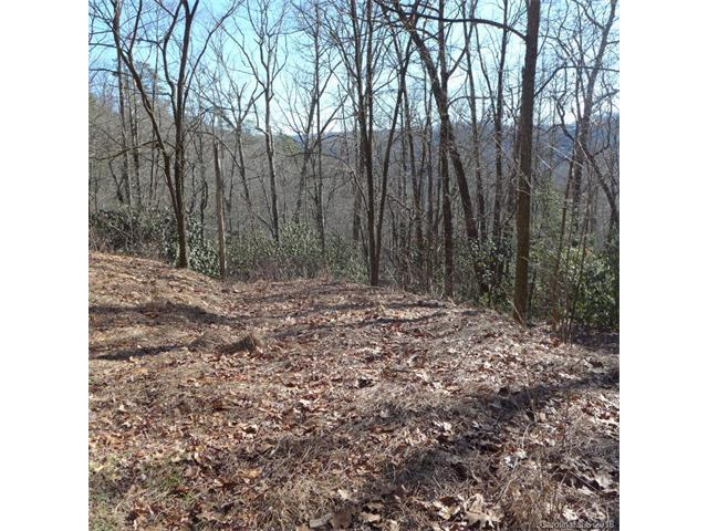 77 Laurel Thicket Lane #77, Brevard, NC 28712 (#3351232) :: Exit Mountain Realty