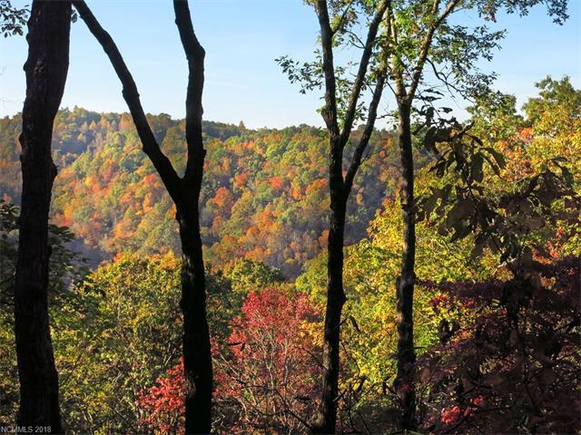 9999 Wild Rose Lane #11, Brevard, NC 28712 (#3351302) :: Exit Mountain Realty