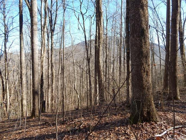 Lot 44 Fern Trail, Waynesville, NC 28786 (#3351628) :: The Temple Team