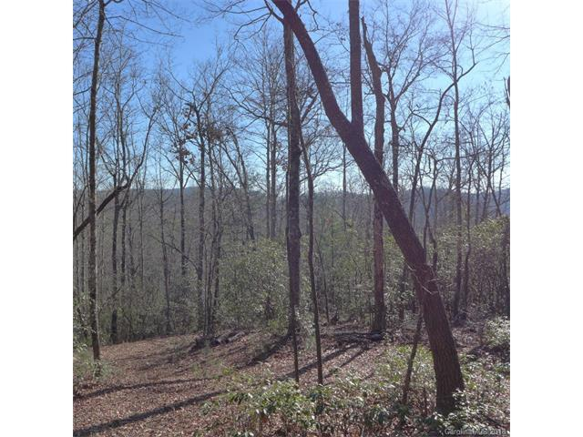 4 lot Package Green Hollow Lane 105,106,116,117, Brevard, NC 28712 (#3352029) :: The Sarver Group