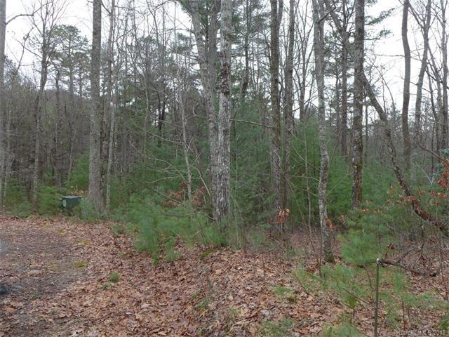 2 lot Package Hunters Ridge 120,121, Brevard, NC 28712 (#3352037) :: Keller Williams South Park