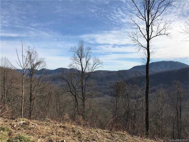 604 Warbler Lane T-63, Black Mountain, NC 28711 (#3352179) :: Mossy Oak Properties Land and Luxury