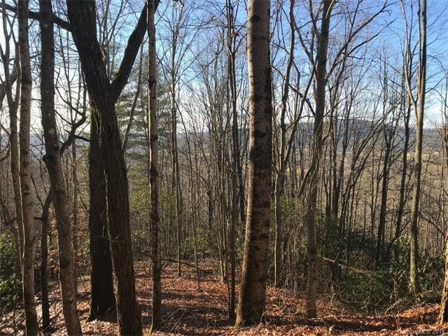 6A Gardner Lane 6A, Pisgah Forest, NC 28768 (#3352582) :: Team Southline
