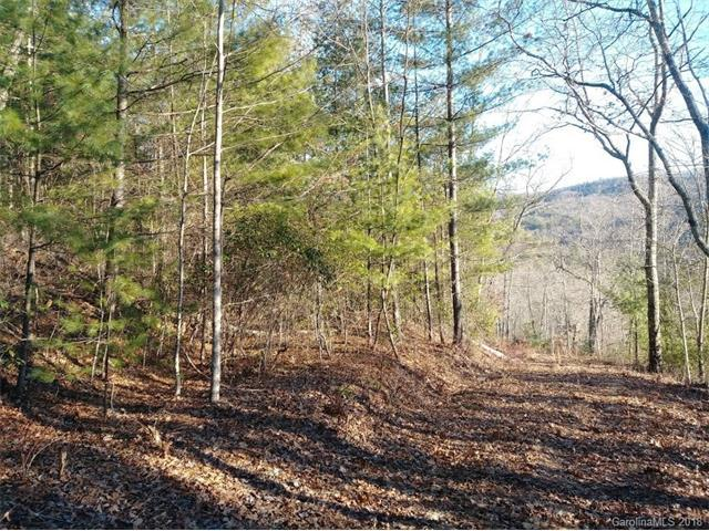 Lot #9 Honey Mountain Road, Lake Toxaway, NC 28747 (#3352881) :: Team Southline