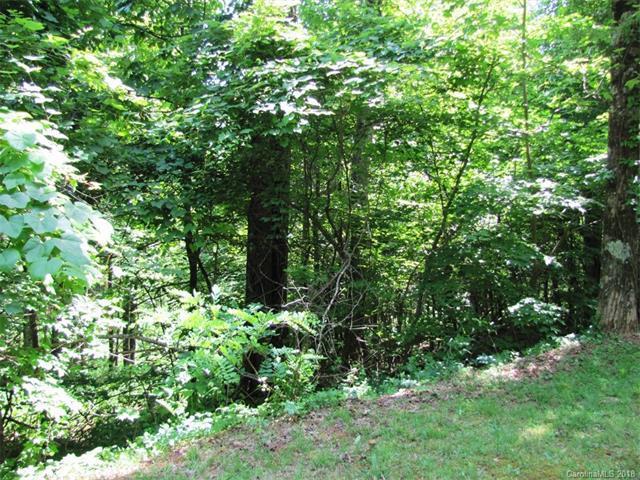 #20 Sunset Ridge Drive, Columbus, NC 28722 (#3353004) :: Cloninger Properties