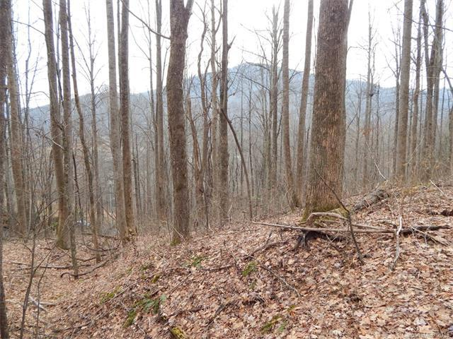 Lot 45 Fern Trail, Waynesville, NC 28786 (#3353303) :: The Temple Team