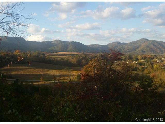 9 Foothills Cove #9, Clyde, NC 28721 (#3353305) :: Scarlett Real Estate