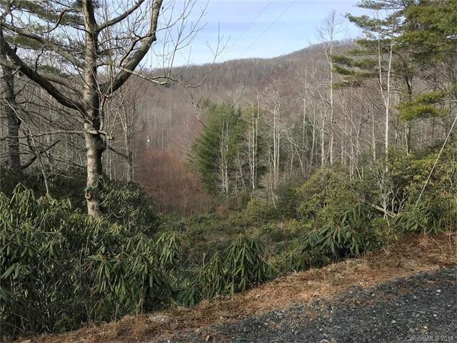 750 Bear Cub Drive #9, Spruce Pine, NC 28777 (#3353557) :: Burton Real Estate Group