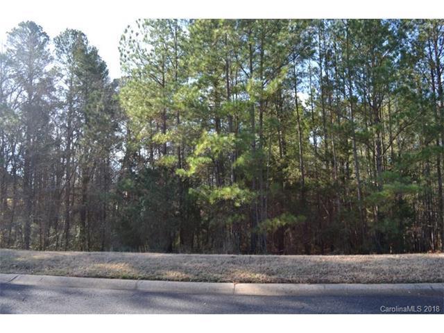 1419 Jack White Drive, Rock Hill, SC 29732 (#3353857) :: LePage Johnson Realty Group, LLC