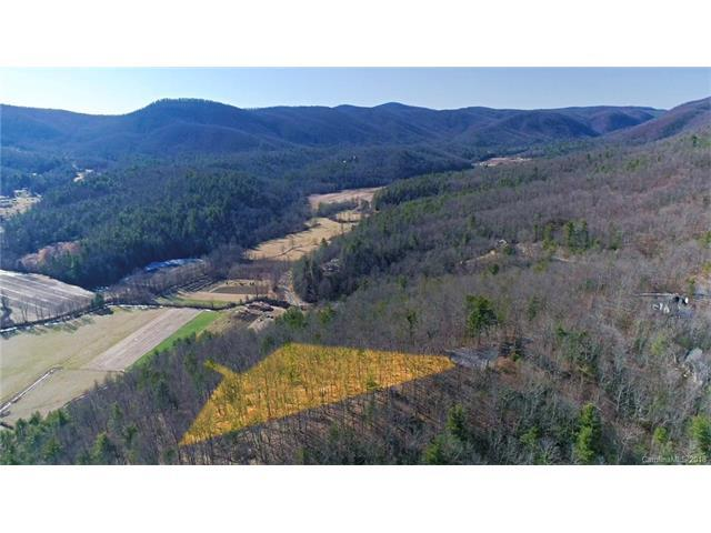 152 Brown Bear Ridge Trail #16, Zirconia, NC 28790 (#3353909) :: LePage Johnson Realty Group, LLC