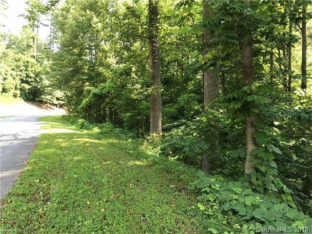 1361 Pleasant Grove Church Road, Hendersonville, NC 28739 (#3354456) :: MECA Realty, LLC