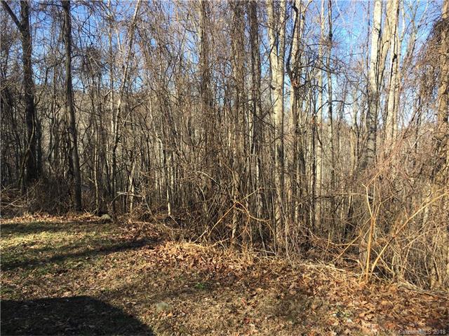 104 Aster Ridge Trail, Swannanoa, NC 28778 (#3354487) :: MartinGroup Properties