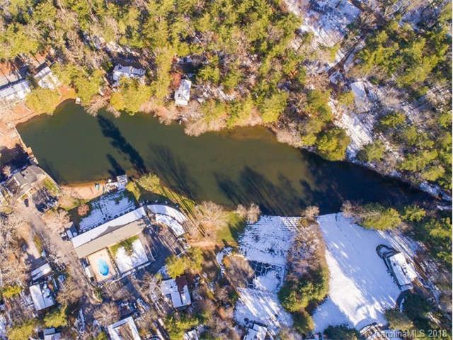 1150 Blue Ridge Road, Flat Rock, NC 28731 (#3354786) :: Caulder Realty and Land Co.