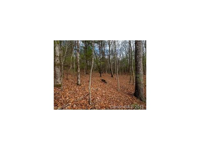 Lot 22A Indian Ridge Trail, Hendersonville, NC 28792 (#3355168) :: Exit Mountain Realty