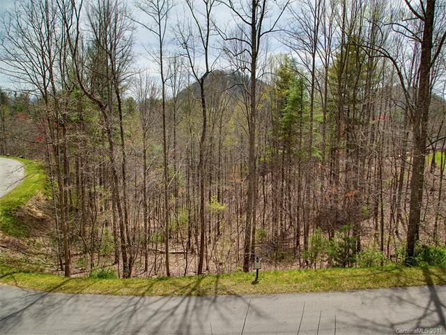 229 Starling Pass #107, Woodfin, NC 28804 (#3355211) :: LePage Johnson Realty Group, LLC