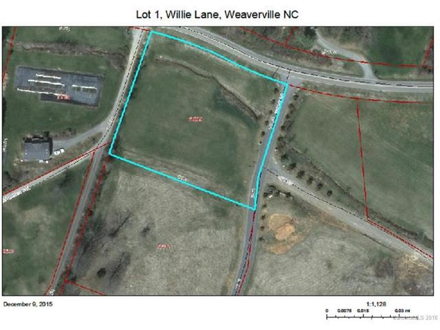 Lot 1 and 2 Willie Lane, Weaverville, NC 28787 (#3355623) :: Rinehart Realty