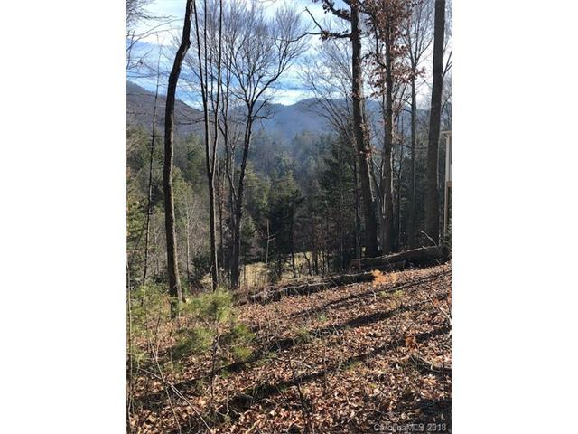4 Ivywood Road #5, Weaverville, NC 28787 (#3356034) :: Exit Mountain Realty