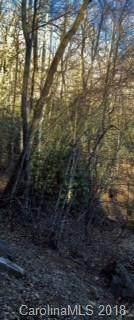 25 Winding Poplar Road - Photo 9