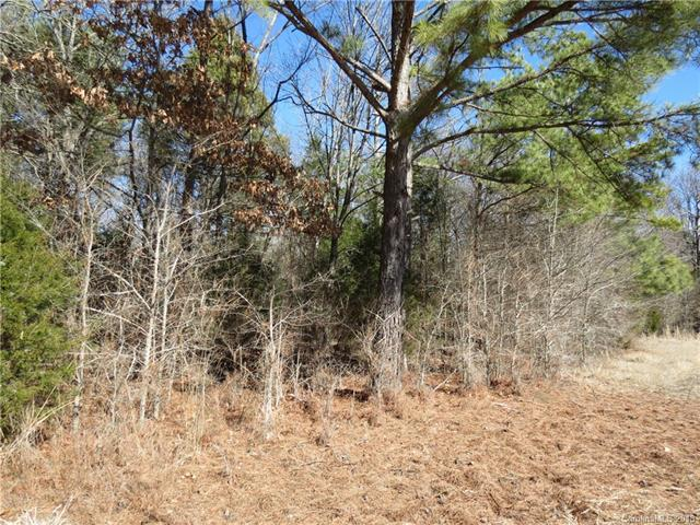 40 acres Overlook Road, Rock Hill, SC 29730 (#3356262) :: Stephen Cooley Real Estate Group