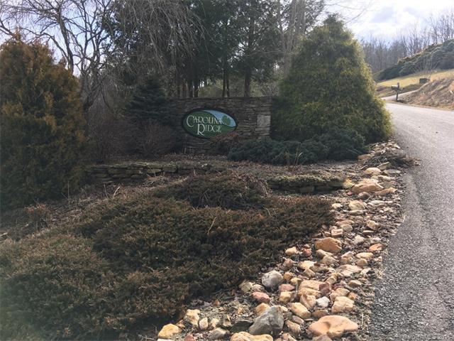 Lot 1 Walnut Cove Road #1, Mars Hill, NC 28754 (#3356272) :: LePage Johnson Realty Group, LLC