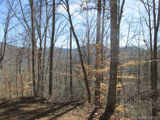 246 Quiet Cove Place Lot 8, Sylva, NC 28779 (#3356301) :: Cloninger Properties
