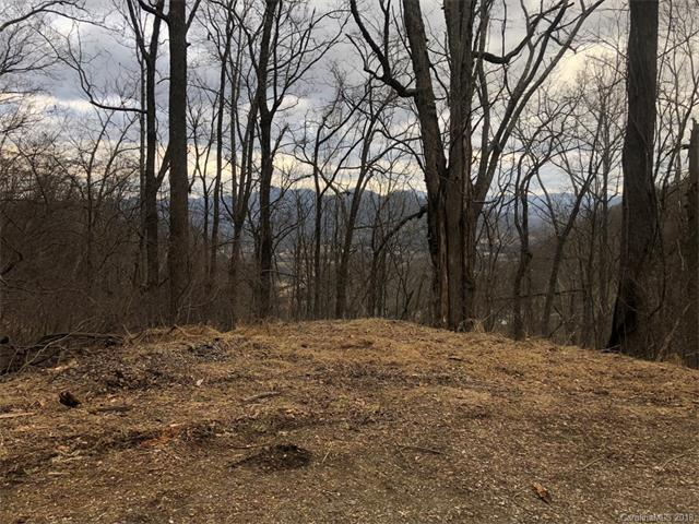 Lot 27 High Springs Trail, Waynesville, NC 28786 (#3356557) :: MECA Realty, LLC